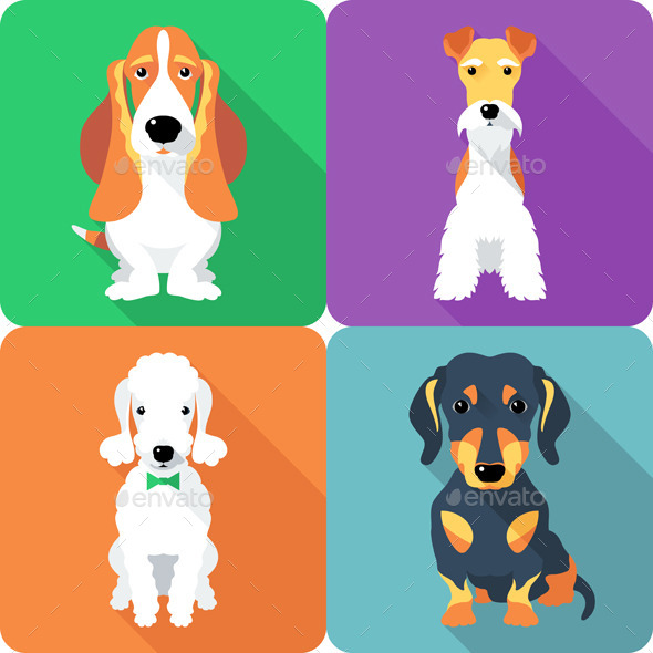 Set Dogs Icon Flat Design  - Animals Characters