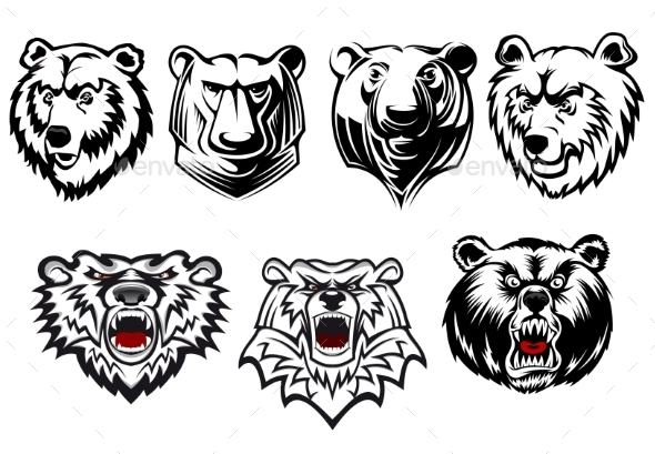 Bear Mascots  - Animals Characters