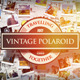 Vintage Polaroid Photos - VideoHive Item for Sale