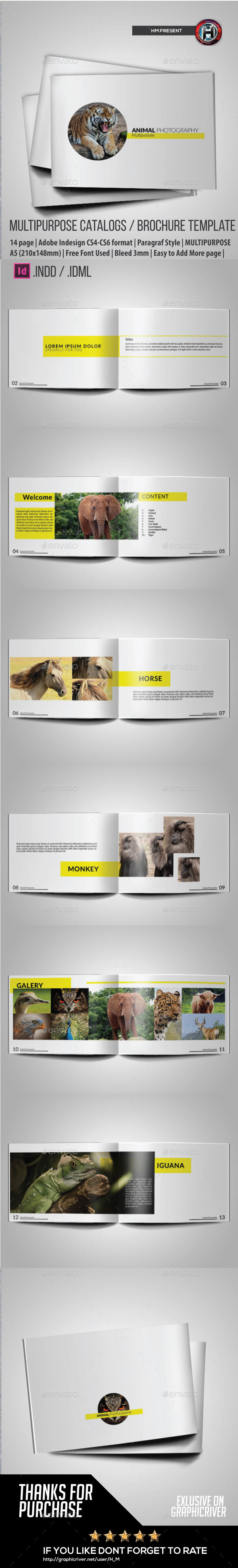 Minimal Purpose Animal Photography - Portfolio Brochures