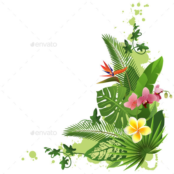 Tropical Background - Flowers & Plants Nature