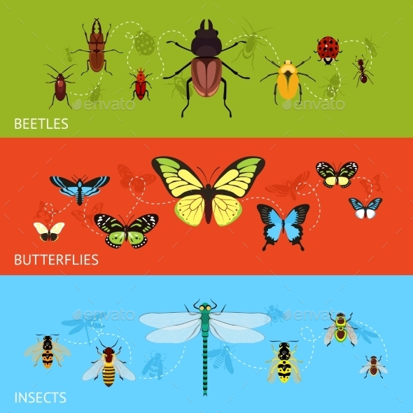 Insects Banner Set - Animals Characters