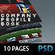 Professional Company Profile Brochure (10 pages) - GraphicRiver Item for Sale