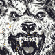 Night Wolf - GraphicRiver Item for Sale