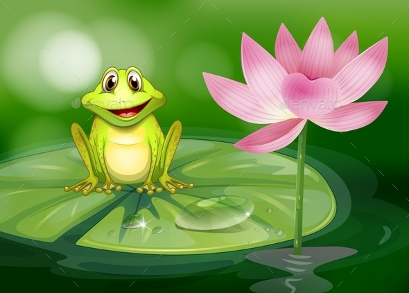 Frog Beside a Pink Flower at the Pond - Animals Characters