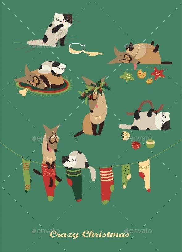 Dog and Cat Celebrating Christmas - Christmas Seasons/Holidays