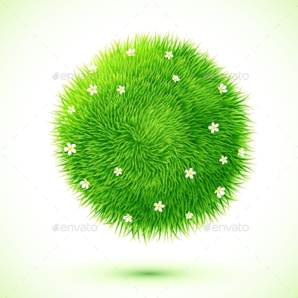 Fluffy Grass Ball with Flowers - Flowers & Plants Nature