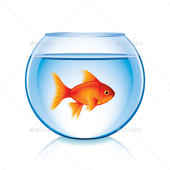 Goldfish in Bowl - Animals Characters