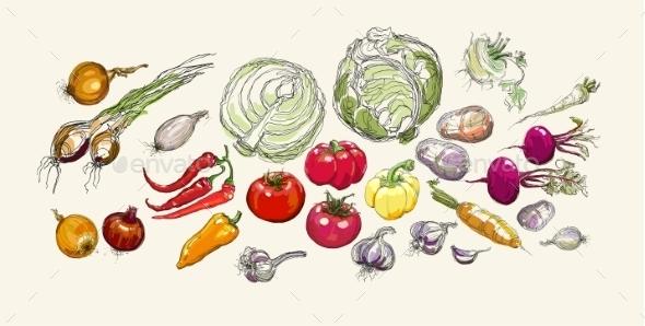Vegetables - Flowers & Plants Nature