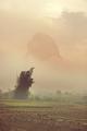 Vietnamese landscapes