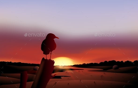 Bird in a Sunset View of the Desert - Landscapes Nature