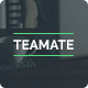 Teamate - One Page Company Website - ThemeForest Item for Sale