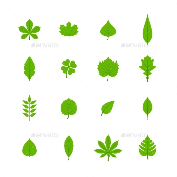 Green Leaves Icons - Decorative Symbols Decorative