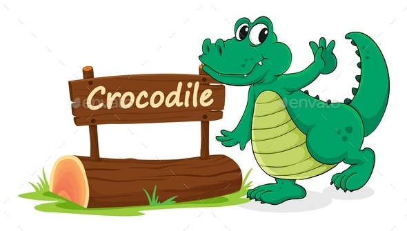 Crocodile and Name Plate - Animals Characters
