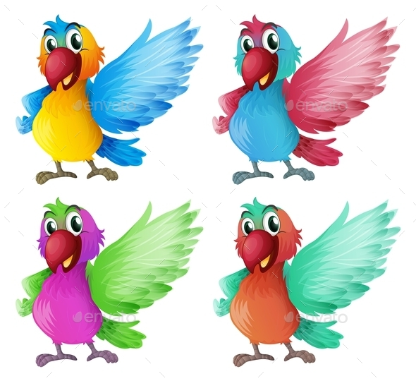 Four Parrots - Animals Characters