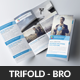 Creative Business Trifold Brochures - GraphicRiver Item for Sale