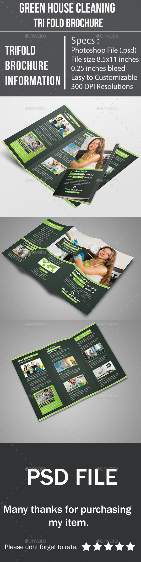 Green House Cleaning Tri Fold Brochure - Corporate Brochures