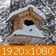 Winter Birdsnest (2-pack) - VideoHive Item for Sale