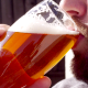 Drinking Beer - VideoHive Item for Sale