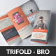 Website Design Agency Trifold Brochure  - GraphicRiver Item for Sale