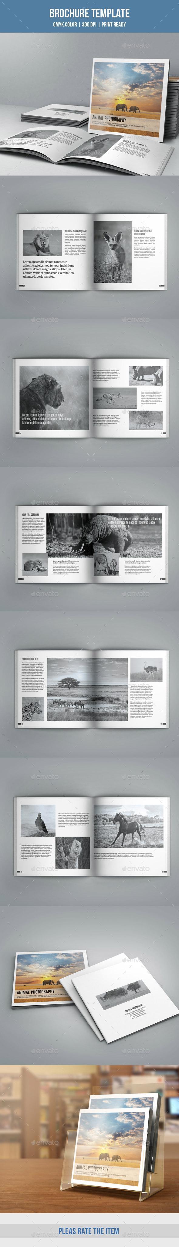Photographer Portfolio Brochure-V169 - Corporate Brochures