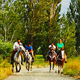 Horseback Riding - VideoHive Item for Sale