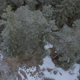 Snowy Forrest Aerial Drone - VideoHive Item for Sale