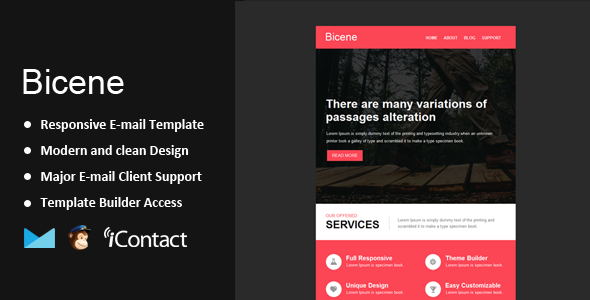 Bicene - Responsive Email + Themebuilder Access