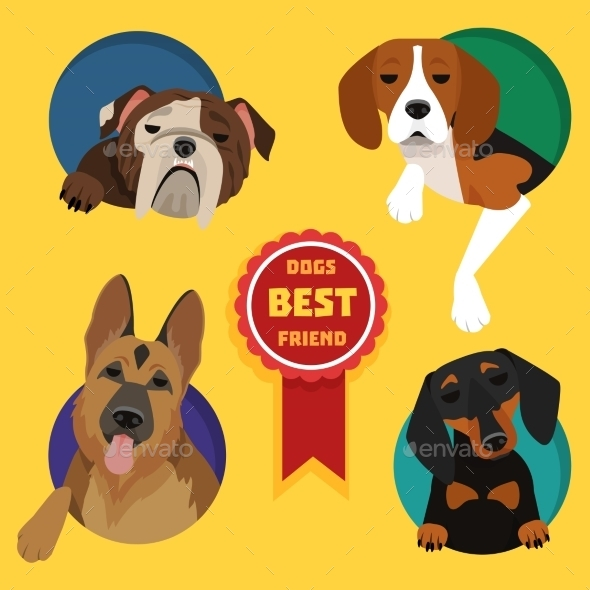 Set of Different Dog Breeds - Animals Characters