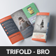Website Design Agency Trifold Brochures - GraphicRiver Item for Sale