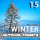 15 Winter Lightroom Premium Presets - GraphicRiver Item for Sale