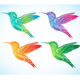 Colorful Hummingbird 2 - GraphicRiver Item for Sale