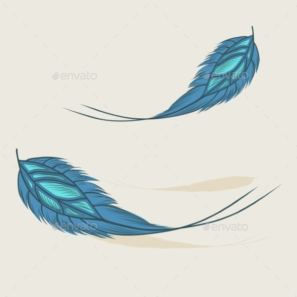 Feathers - Objects Vectors