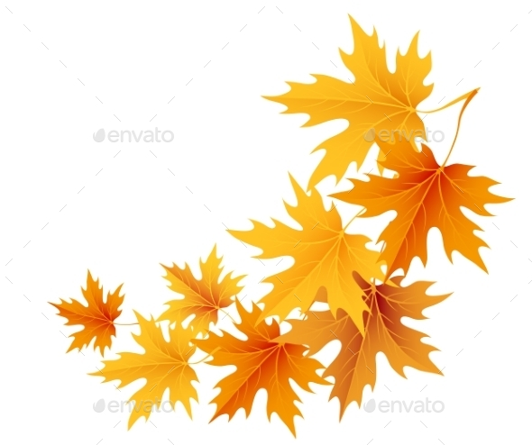 Autumn Leaves Background - Nature Conceptual