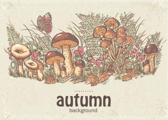 Autumn Background  - Nature Conceptual
