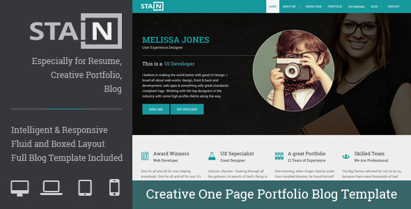Stain – Creative One Page Portfolio Blog Template