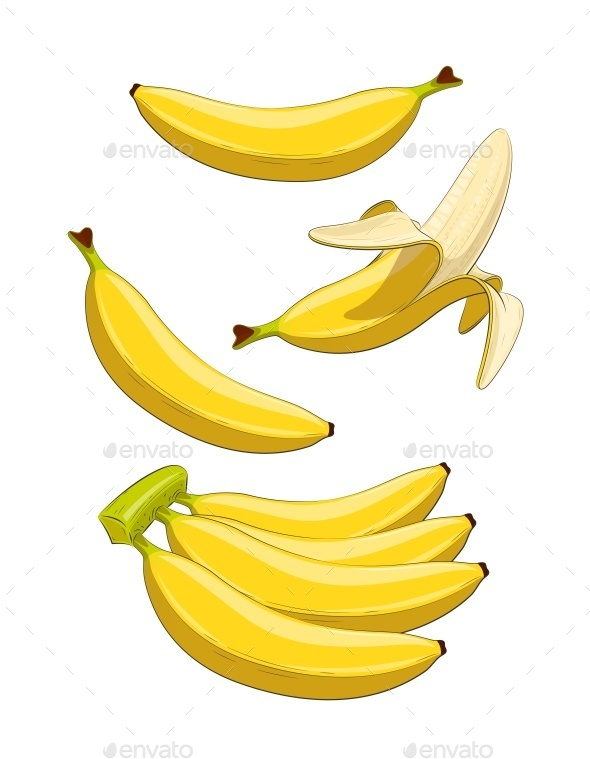 Banana - Miscellaneous Vectors