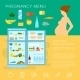 Pregnancy Menu Food Flat Style Vector Infographic  - GraphicRiver Item for Sale