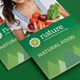 Eco Nature 3-fold Brochure - GraphicRiver Item for Sale