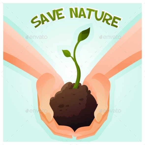 Two Hands Holding a Young Green Plant - Nature Conceptual
