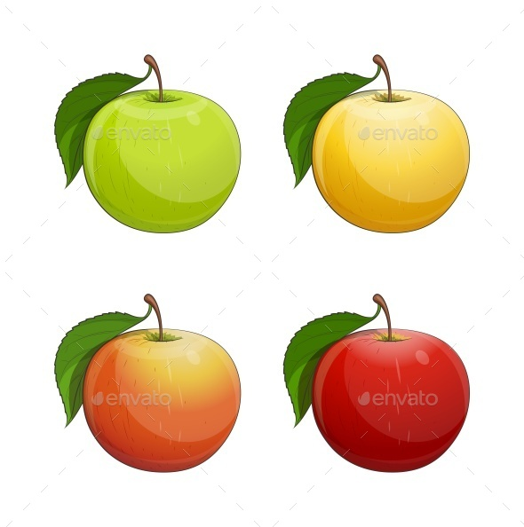 Ripe Apple with Green Leaf - Miscellaneous Vectors