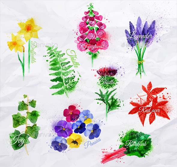 Watercolor Plants and Flowers - Flowers & Plants Nature