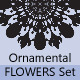 Ornamental Flowers Set 4 - GraphicRiver Item for Sale
