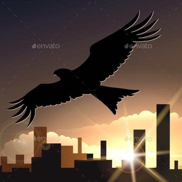 Flying Eagle - Conceptual Vectors