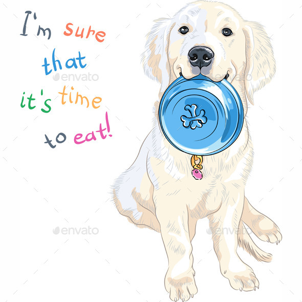 Labrador Retriever with Bowl for Food - Animals Characters