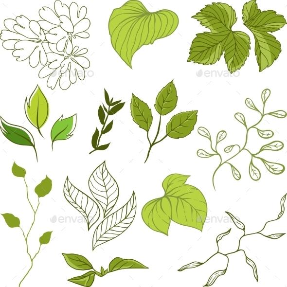 Leaves Set - Flowers & Plants Nature