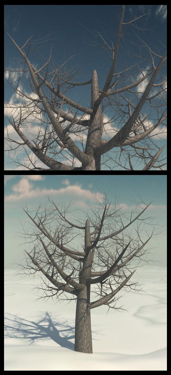 Dead Elm Tree - 3DOcean Item for Sale