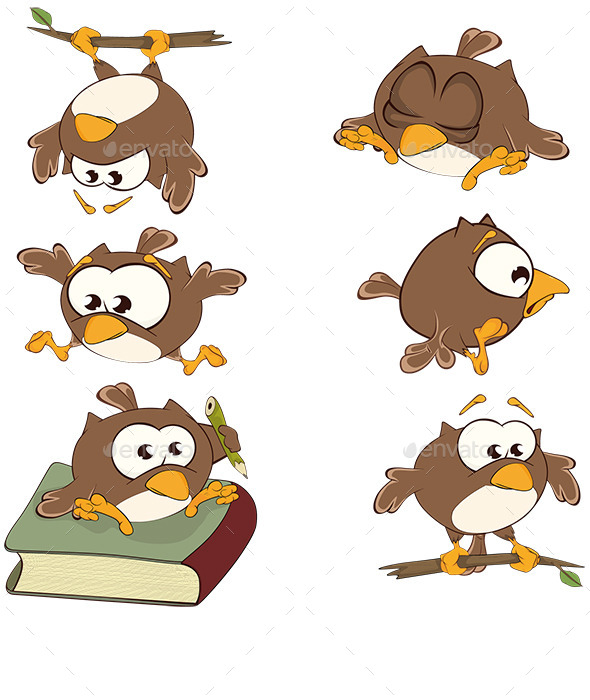 Set of Owls - Animals Characters