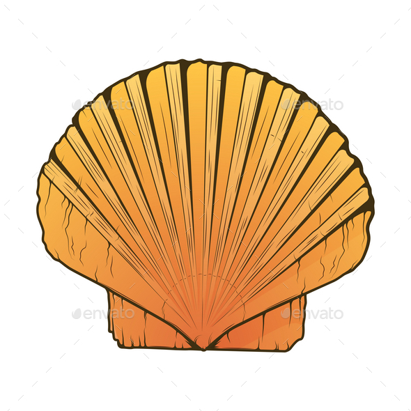 Sea Shell - Organic Objects Objects