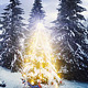 Christmas Tree in the Forest - VideoHive Item for Sale